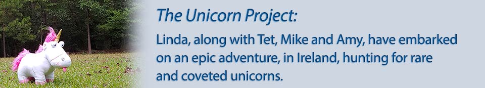 unicorn project2
